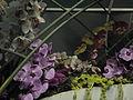 Haifa International Flower Exhibition P1140007.JPG