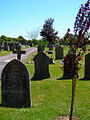 Hailsham Cemetery - geograph.org.uk - 202955.jpg