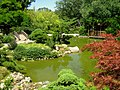 Hakone Gardens, Saratoga, CA - IMG 9190.JPG