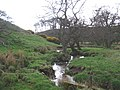 Hampeth Burn - geograph.org.uk - 780735.jpg