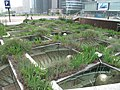 Hanging gardens at la Defense 3.jpg