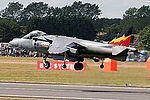 Harrier (5132979886).jpg