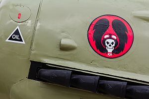 101 Squadron (Israel)