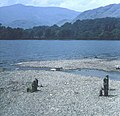 Head of Coniston Water - geograph.org.uk - 792003.jpg