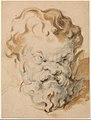 Head of Silenus MET DP273273.jpg