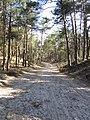 Heiligenweg (30804863120).jpg