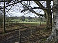 Highclere Park - geograph.org.uk - 360660.jpg