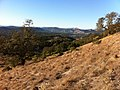 Hiking Annadel Park, Santa Rosa, CA - panoramio.jpg