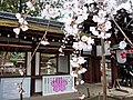 Hirano Shrine 平野神社 - panoramio (3).jpg