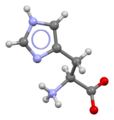 Histidine-from-xtal-3D-bs-17.png