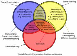 Px Homograph Homophone Venn Diagram on Homograph And Homophone Venn Diagram