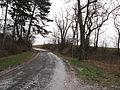Horní Kamenice (Vraný), silnice.jpg