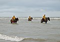 Horse shrimpers of Oostduinkerke (DSCF9715).jpg