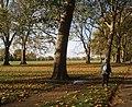 Hyde Park - geograph.org.uk - 1574373.jpg