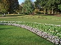 Hyde Park Flowers - geograph.org.uk - 1574357.jpg