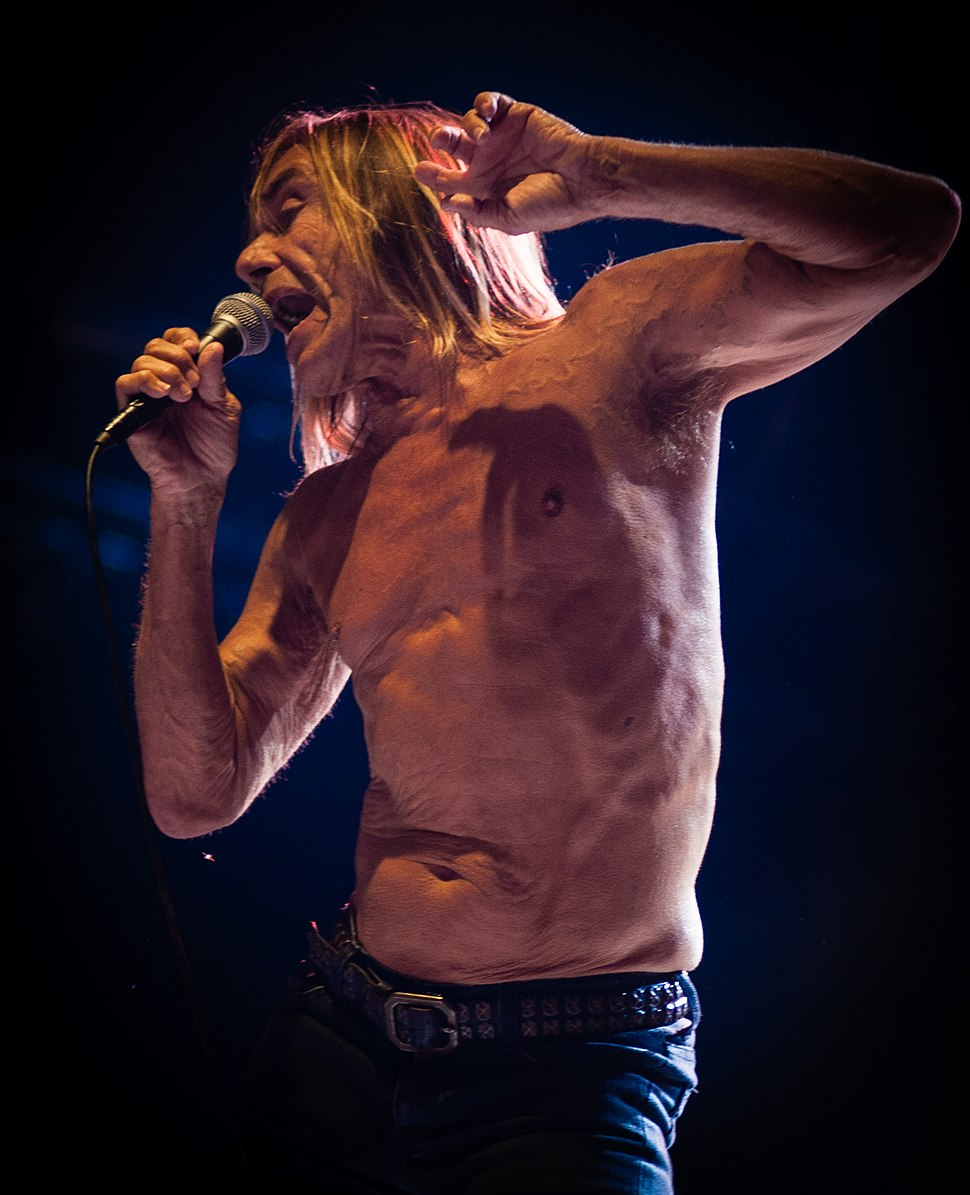 Iggy & The Stooges @ Bsf 2012 (7855853088)