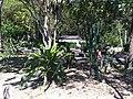 Iguape - SP - panoramio (280).jpg
