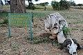 Image of the entrance to Tarangire National Park.jpg