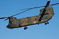 JGSDF CH-47J 20120108-03.jpg