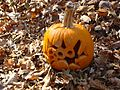 Jack o lantern pumpkin in leaves.jpg