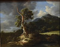 Jacob van Ruisdael, Mountainous Landscape with a Blasted Oak Tree and a Grainfield, 1660, National Gallery, Oslo (36420468116) (cropped).jpg