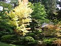 Japanese Garden, with Tea House - geograph.org.uk - 981192.jpg