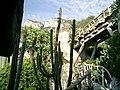 Jardin Exotique - monaco - panoramio - kajikawa.jpg