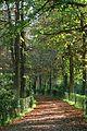 Jardines del Buen Retiro (Madrid) 34.jpg