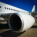 Jet engine (5195403907).jpg