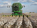 John Deere cotton harvester kv02.jpg