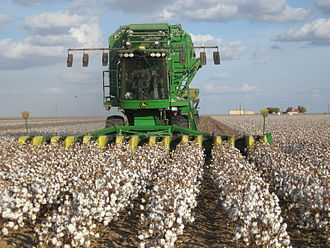 Agricultural machinery - A John Deere cotton harvester at work in a cotton field.