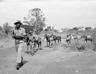 Mau Mau Uprising - Troops of the King's African Rifles on watch for Mau Mau rebels.