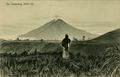 KITLV - 1405099 - Kleingrothe, C.J. - Medan - The Sinabung volcano, 2680 m., near Kabanjahe, Sumatra - 1908-1930.tif
