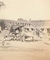 KITLV 100543 - Unknown - Oxcart in British India - Around 1870.tif