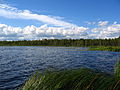 Kadja järv.JPG