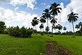 Kahanu Garten Maui Hawaii (45016125354).jpg