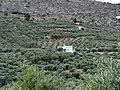 Kalamitsi Alexandrou - panoramio (8).jpg