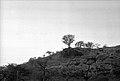 Kamakumba Cave, Wara-Wara Bafodia Chiefdom, Sierra Leone (West Africa) 1968 (2895836865).jpg