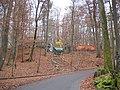 Kellerwald, Schösslakeller - panoramio.jpg