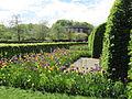 Keukenhof Garden (59).JPG