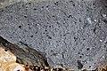 Kimberlite (Gates-Adah Kimberlite Dike, Early Jurassic; Fayette County, Pennsylvania, USA) 10 (48353965362).jpg