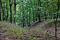 Klein-Glienicke Karpaten heut.jpg