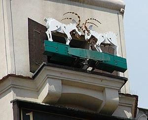 Koziołki Poznań lipiec 2007 RB5