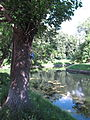 Krasnaya Presnya Park in summer 03.JPG