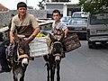 Kruja Albania - Donkeys.jpg