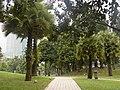 Kuala-Lumpur - panoramio - Maksym Kozlenko (2).jpg