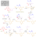 Kynureninase reaction.png