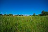 La Crosse River Trail Prairies.jpg