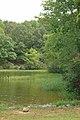 Lake Anna State Park (7987012349).jpg