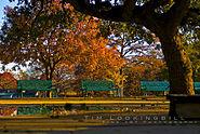Landa Park Dance Slab autumn sunset